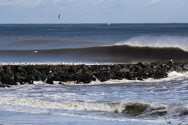 Runner Firing Sunday 12/15/2013. New York, Empty Wave photo