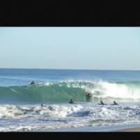 Sunshine Coast, surfing photo