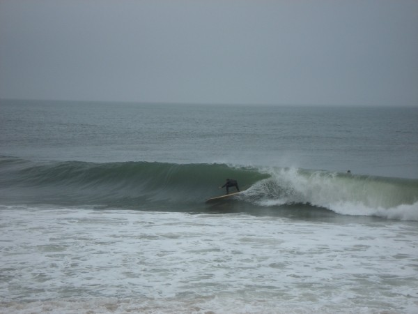 Stink Bug Stance in Bethany. Delmarva, surfing photo