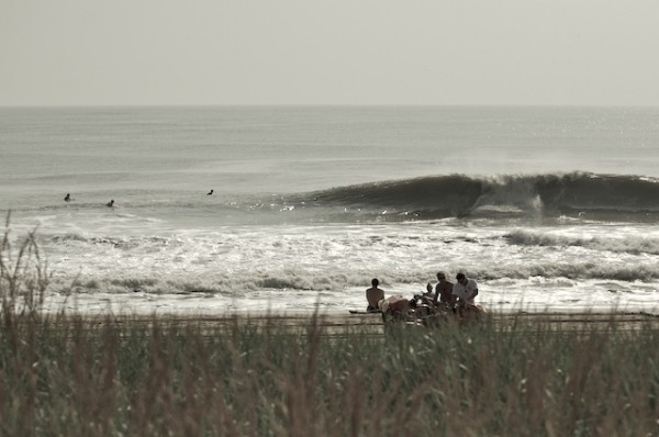 North De. Delmarva, surfing photo