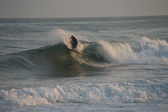 Aug Session. New York, Surfing photo