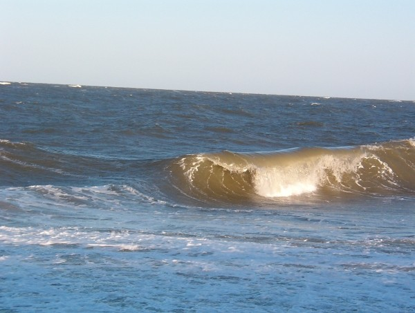 SS windy sunday bowl!  Purfecto.. Delmarva, surfing photo