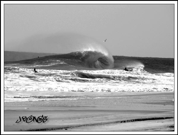 Westside L.I. Love. New York, surfing photo