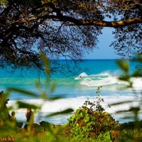 Barbados Dreamin Maycocks emptyness. Barbados, Surfing photo