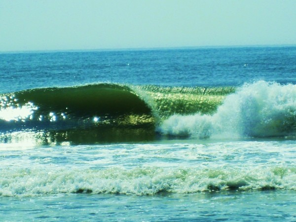 Mini Perfection 2 Loving it...AGAIN!. New Jersey, surfing photo