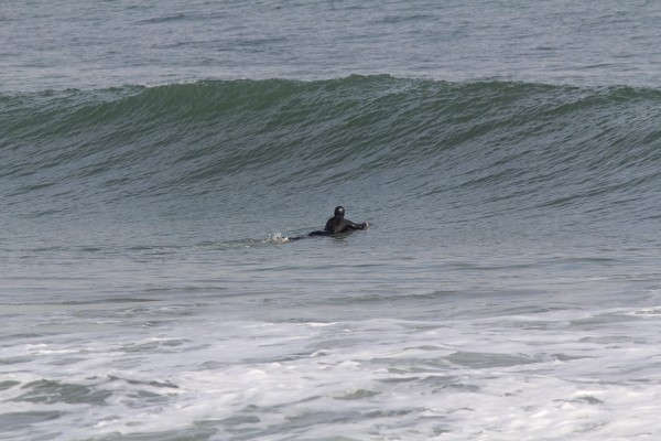 Img 0173 1. Virginia Beach / OBX, Surfing photo