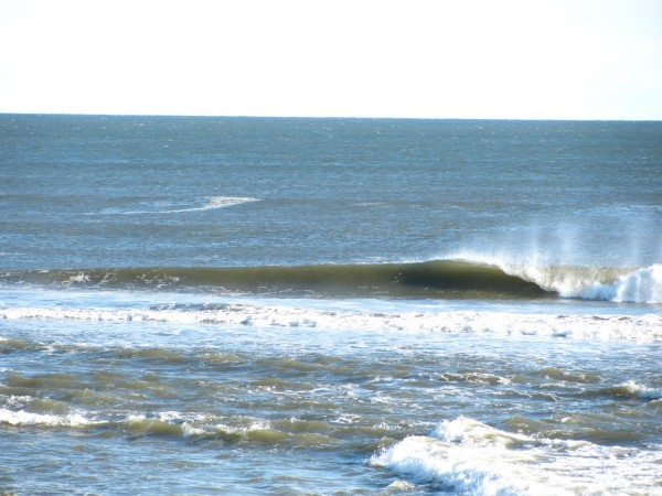 110710 Central Wrong Island lefts. New York, Empty Wave photo