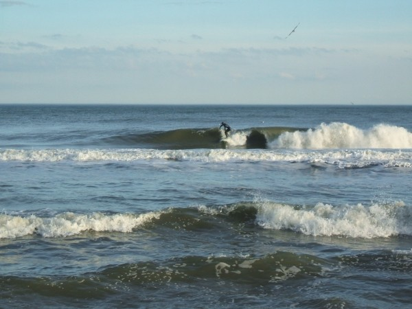 Jan 9 surf Simpson. Delmarva, surfing photo