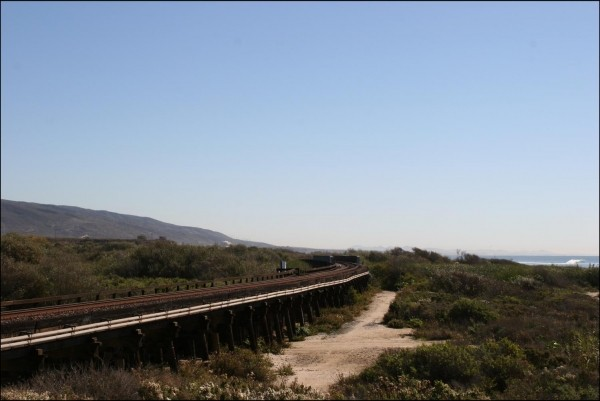 Save Trestles! The last undamned creek in Southern