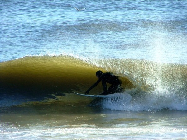 2 12 09 Oc And De. Delmarva, surfing photo