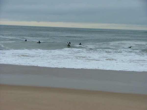 2 13 08 delaware. Delmarva, surfing photo