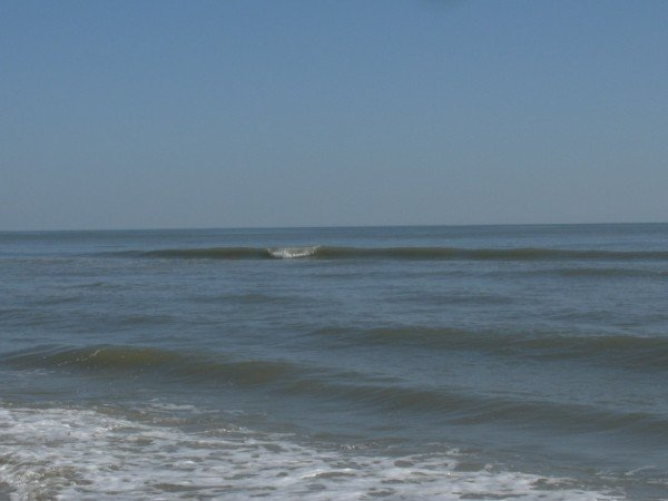 Surfing At 79th Ave.. South Carolina, surfing photo