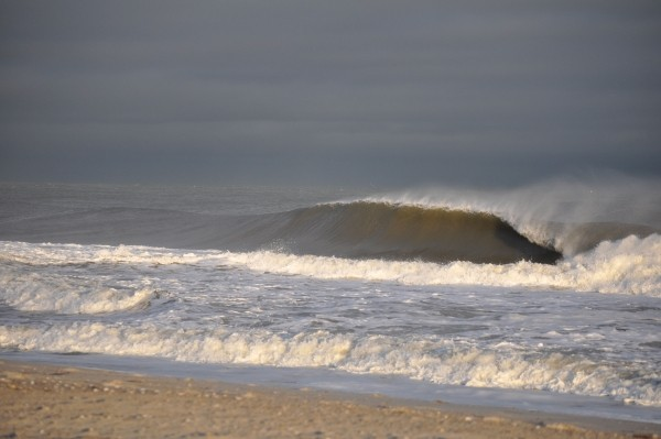 LBI - 12/1 Not many people out but some overdue fall