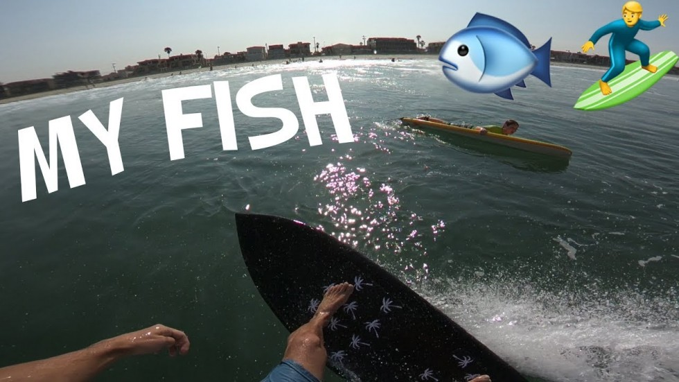 SURFING MY FISH for the FIRST TIME